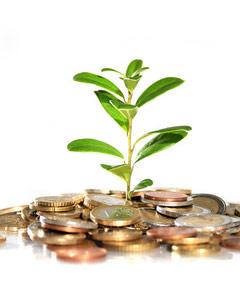 Как подавать сведения об инвестициях: Форма п 2 инвест